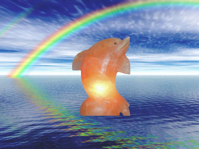 Solna lučka delfin