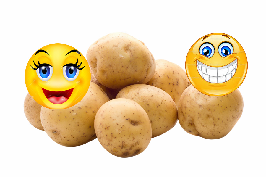 Popust krompirjevih počitnic