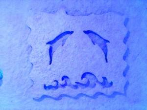 Delfini-modri-Šentilj